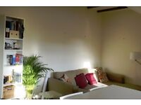 SHORT TERM LET: Room available for 10 days in February - £200