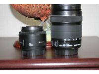 2 Canon lense's--EF-S 18-135 IS STM and Canon 50mm lens.[Nifty Fifty[