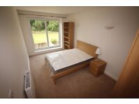 *Available Now* Large Double Room to Rent - Close to N&N