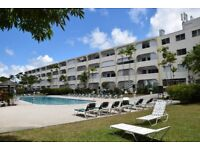 1 Bedroom apartment, Golden View Resort, Hole Town St James, Barbados, sleeps 4
