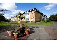 1 bed flat, Pallister Park, Middlesbrough for over 55's