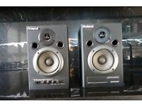 Roland DM-10 Digital Stereo Micro Monitors.