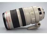 Canon EF 100-400mm 4.5 - 5.6 L-Series IS USM