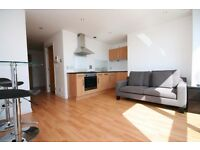 Stylish 9th Floor FURNISHED Studio Apartment, Stobcross St