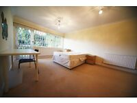 Amazing 3/4 bedroom ground floor flat in Finchley Central