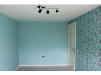 Painting and decorating/plastering/gypsum boarding/laminate floors/house renovation