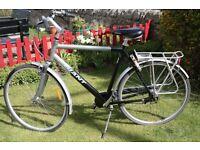 Giant Darwin Bicycle XL size