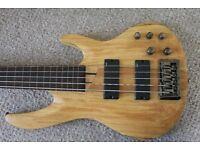 ESP LTD 5 Strings Fretless Active Bass B205SM-FL + Semirigid case