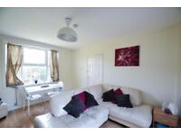 Beautiful 3/4 bedroom house with large private garden in Zone 3 West Acton