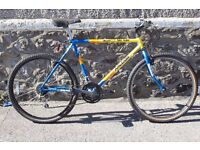 RALEIGH MOUNTAIN BIKE TEAM ISSUE / 80's Bicycle trail retro vintage 18 gears blue