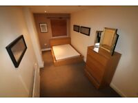 A modern spacious room in a well-presented shared house.