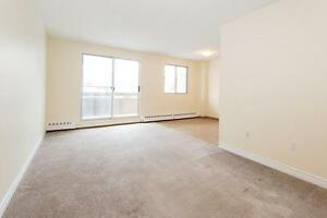 NEW MANAGEMENT! 1 Bedroom Apartment for Rent in Niagara Falls