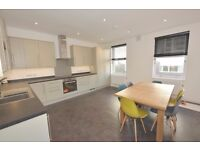 Brand new 3bed split level apartment,roof terrace, 10 min from Elephant Castle tube ,furnished