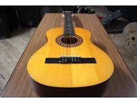 Generic Classical Acoustic Guitar