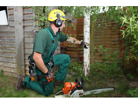Tree Surgery Specialists Required in London! Start Your Own Business!