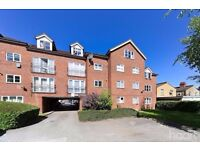 1 bed furnished flat (Great location)