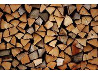 Firewood logs kindling 🌲 🔥