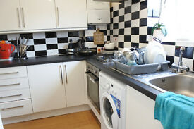 Great 2/3 bedroom flat in Seven Sisters