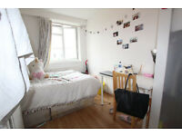 SO COOL! LIVE IN A FRIENDLY FLAT IN AWESOME AREA! CHOOSE ONE OF MANY!
