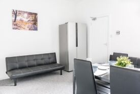 Luxurious Ensuites Room for Professional
