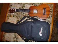 ukulele ( kala) with padded gig bag
