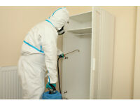 Expert Pest Control services in Bromley, London.