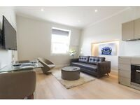 **LUXURY ONE BEDROOM FLAT** NOTTING HILL AREA- ZONE 1 ~PORTER/GYM/ROOF TERRACE ~