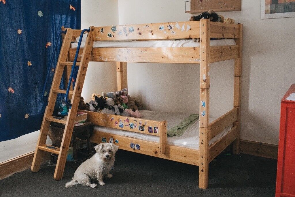 Thuka Trendy Shorty Bunk Bed With Free Mattresses