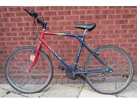 Man's bike by Hawk cycles