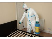 Professional Pest Control | Available 24/7 in all London areas | Rodent/Bed bugs/Cockroach/Mice