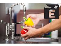 Kitchen Porter in Central London