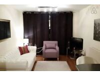 Fantastic view - central London 2 bed flat-All bills included