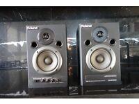 Roland DM-10 Digital Stereo Micro Monitors