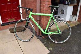 Adult Viking Road Bike