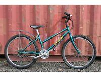 Girls Trek 220 Mountain Bike 24 Inch 9 To 13 Years Fully Serviced
