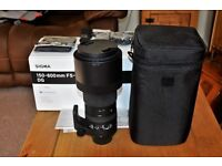 NIKON FIT Sigma 150-600mm Lens - Camera Bag - Tripod