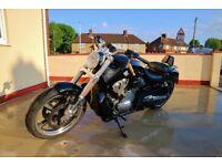 Harley Davidson VROD MUSCLE VRSCF 2016