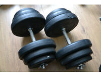 35kg dumbbell weights