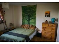 Lovely double bedroom with free parking only for short time.