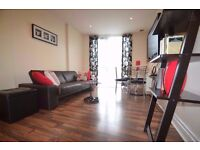 Stunning 1 bed luxury flat Central London near station!