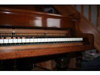 Lovely Scheidmeyer Grand Piano, beautiful tone