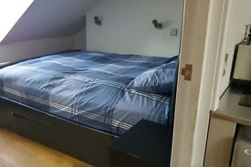 CONFY DOUBLE BEDROOM AVAILABLE NOW IN STRATFORD