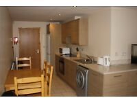 SERVICED APARTMENT OR ROOMS AVAILABLE TO RENT SHORT TERM WEEKLY OR MONTHLY CLOSE TO BELFAST CITY
