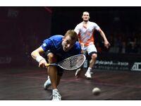Squash Partner Sheffield/Rotherham