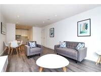 LUXURY BRAND NEW 1 BED STREATHAM HILL LONDON SQUARE SW2 BRIXTON CLAPHAM BALHAM