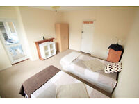 Lovely twin room available now!! HURRY UP!!