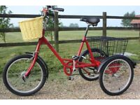 LIKE NEW CONDITION, FAB Adults Pashley Picador Tricycle British Cargo Trike 3 Wheeled bike cycle