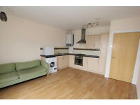 1 Bedroom flat in Goodmayes available now part dss acceptable with guarantor