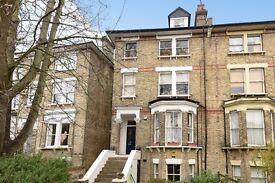 Thicket road, SE20 - Spacious two double bedroom garden apartment to rent.