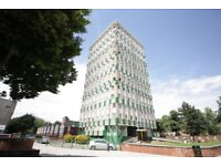 STUNNING 2 BED FLAT ¦ CLOSE TO VICKY PARK AND TUBE ¦ AVAILABLE END JUNE